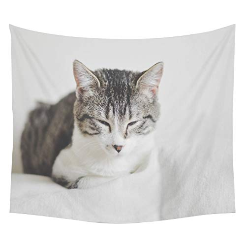 Cartoon Cat Dog Tapestry Wall Hanging Beach Towel Beach Sitting Blanket Cute Animal Cat Dog Bedroom Living Room Blanket Yoga Beach Towel Tablecloth 3D Animal Print Wall Hanging 200 * 150cm GT-1 (11)