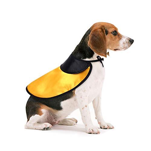 Factorys Haustier Hund Katze Kostüme Cosplay Hexe Mantel, alte lustige Dekoration Halloween Mantel, Lassen Sie Ihr Haustier Ihre Halloween-Party beitreten - Alter Mantel