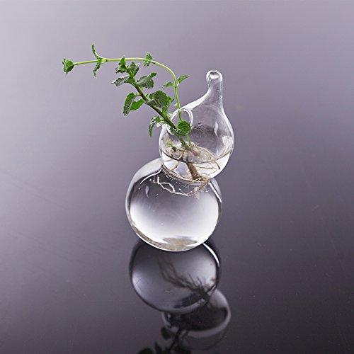 florero-colgante-de-pared-jarron-maceta-botella-forma-de-calabaza-cristal-decoracion-planta-flor