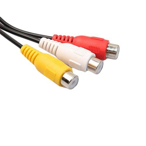 Wokee Jack Kabel S-Video 7-Pol Stecker für DVD, DVD, TV, HDTV, Videorekorder, CD-Player (25 cm) 7-poliger Stecker S-Video auf 3 Cinch Stecker Kabel TV Konverter Kabel TV Neu 25 S-video S-video