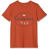 Quiksilver Wave Slaves T-Shirt Boys Camiseta de Manga Corta, Niños, Rojo (Burnt Brick), S/10