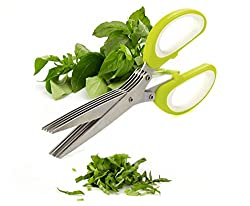 Multifunction 5 Blade Vegetable Chopper Stainless Steel Herbs Scissor (Color may vary)