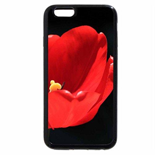 iPhone 6S / iPhone 6 Case (Black) Tulipa