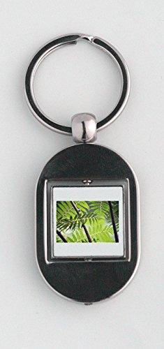 Key Ring with Fern, Brake, Plant, Green, Forest, Leaf -