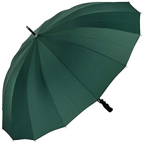 VON LILIENFELD Regenschirm Partnerschirm Automatik Damen Herren Fiberglas 16 Stangen Sehr Stabil Cleo Grün