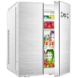 YEXIN 25L Compact Car Travel Freezer Freezer, Mini-réfrigérateur à compresseur portatif à 2 portes pour voiture et maison, Camping, Truck Party, Voyage, Pique-nique en plein air