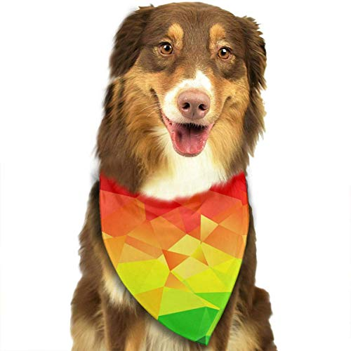 nxnx Pet Dog Bandana Scarf Pack Triangle Bibs Polygonal Geometric Rainbow Colorful Printing Kerchief Set Accessories for Small to Large Dogs Cats Pets