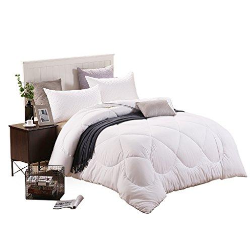 MMM Plus épais garder chaud couette hiver literie double dortoir chambre Quilt Core ( taille : 200*230cm(2.9kg) )