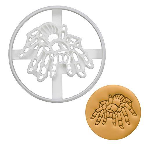 Bakerlogy Vogelspinne Spinne Ausstechform, 1 Teil Bug Cookie Cutter