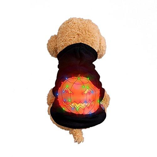Abcsea Haustier Kostüm, Haustier Kleidung, Hund Kleidung, Haustier Glühen Kleidung, Leuchten Im Dunkeln, Hund Halloween Halloween Glühen Kostüm, Kürbis Stil - Schwarz - XS -