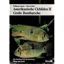 Amerikanische Cichliden II-Große Buntbarsche. Ein Handbuch für Bestimmung, Pflege und Zucht.