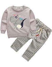 50ac62376 Mitlfuny Niñas Niño Sudaderas Rejilla Pantalones Conjunto de Ropa Bebé  Dinosaurio Dibujos Animados Camisas de Manga