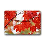 "Dalliy maple leaf Fu?matten Doormat Outdoor Indoor 23.6""x15.7"" about 59.9cmx39.8cm"