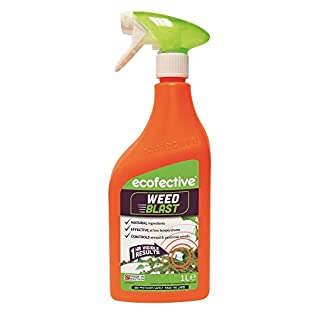 ecofective Weedblast Weed Killer 1L Ready to Use
