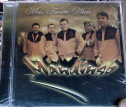 Mandingo (Mas Fuerte Aun) by Grupo Manindgo (Grupo Mandingo-cds)