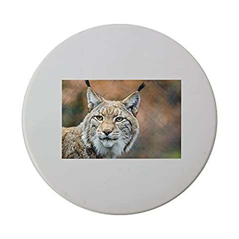 Lynx, Bobcat, Wildlife, Predator, Nature ceramic round coaster (Bobcat Lynx)