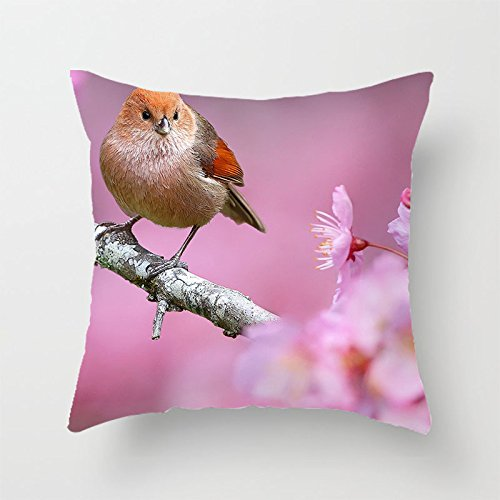 yinggouen-bird-on-peach-decorate-per-un-divano-federa-cuscino-45-x-45-cm