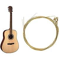 Oldhorse Cuerdas de guitarra universales duraderas Cuerdas para instrumentos de cuerda Accesorios para guitarra Soportes