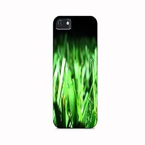 Grass Cover