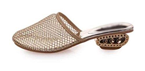 Baotou weiblichen Sommer Sandalen mit dicken Gaze beiläufige Hälfte Pantoffeln Schuhe apricot