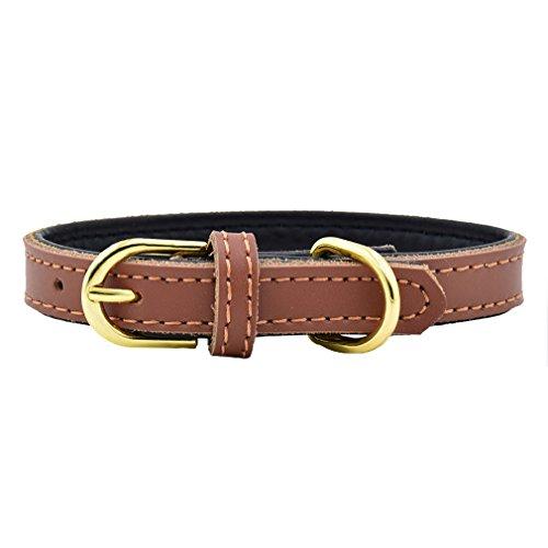 Hundehalsband Halsbänder aus Echt Soft Leder 1.5 - 2.0cm Breit XS S M für kleine mittlere Hunde Hunter Welpen chihuahua, Braun XS
