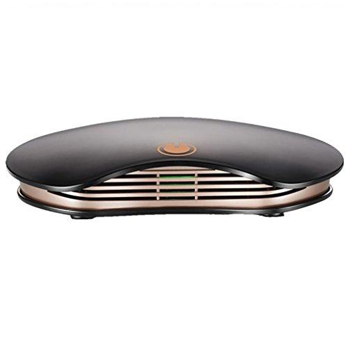 Auto Luftreiniger HEPA Filtertechnologie mit langlebiger Auto Lufterfrischer (Luftreiniger) , luxury black