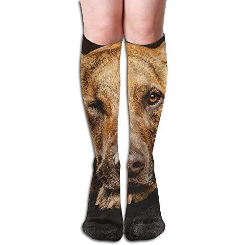 deyhfef Tube High Knee Sock Boots Crew Dog Muzzle Paws Compression Socks Long Sport Stockings -