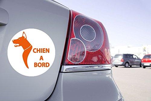 Autocollant Voiture Chien à Bord - 15cm x 15cm, Orange