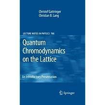Quantum Chromodynamics on the Lattice - an Introductory Presentation