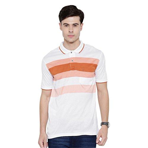 Duke Regular Fit Striper T-shirt For Men Polo Neck 100% Organic Mercerised Cotton Material Rust Color
