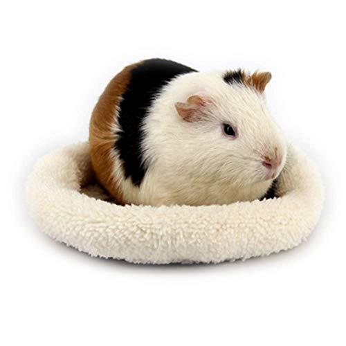Hamster Kopf Kostüm - ANIAC Haustierbett, warm, mit samtiger Weicher Schlafmatte für Hamster, Igel, Eichhörnchen, Mäuse, Ratten, Meerschweinchen und Andere Kleine Tiere, Large, beige