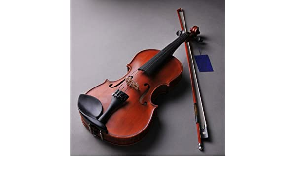 Vif BV250 4//4 Full Size Maple Wood Advanced Violin /& Case