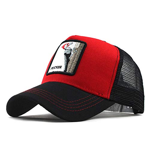 Moda Media Malla Transpirable Gorra Deportiva