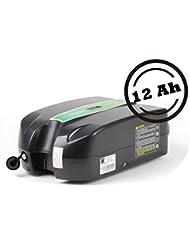 Phylion Akku XH259-10J für E-Bike Pedelec 24V 12Ah für u.a. MiFa, Rex, Prophete (LF)