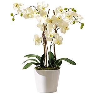 Pureday Planta Artificial Orchid con Maceta de cerámica Blanca