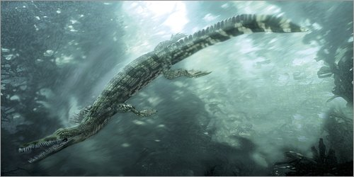 Unbekannt Alu Dibond 80 x 40 cm: Mesosaurus hunting for food underwater. von Jan Sovak/Stocktrek Images