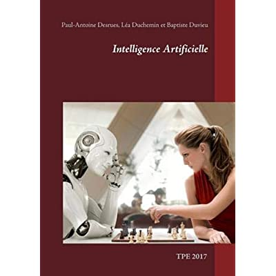 Intelligence artificielle : TPE 2017