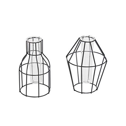 Flanacom 2er Set Deko Vase Tischdeko Dekoration Wohnung Modern Zeitloses Design aus Metall mit Reagenzglas (Moderne Vase Und Geschenk)