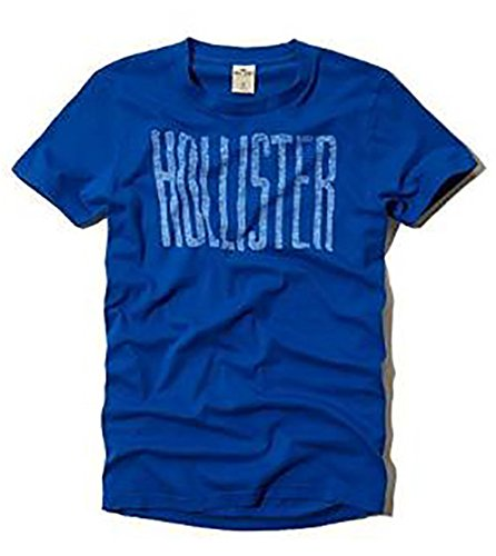 hollister-co-warner-springs-graphic-t-shirt-mens-crew-neck-tee-blue-x-large-xl
