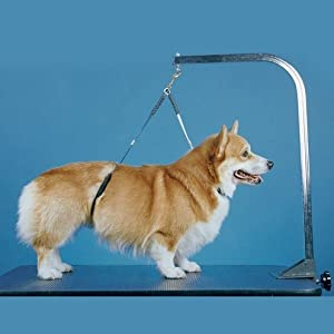 No-Sit Haunch Holder Dog Grooming Restraint Sm Med Dogs from Proguard