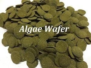 Spirulina Algae Wafer Tablet 100Gram -5KG Tropical Aquarium Pleco Catfish, bottom Feeder Fish Food Feed