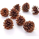 Christmas Hanging Ornaments,Outgeek 12 Pack Natural Pinecone Pendant Set Wood Frosted Pine Cone Ornaments For Xmas Tree Garden Home Decorations By Partyhut®