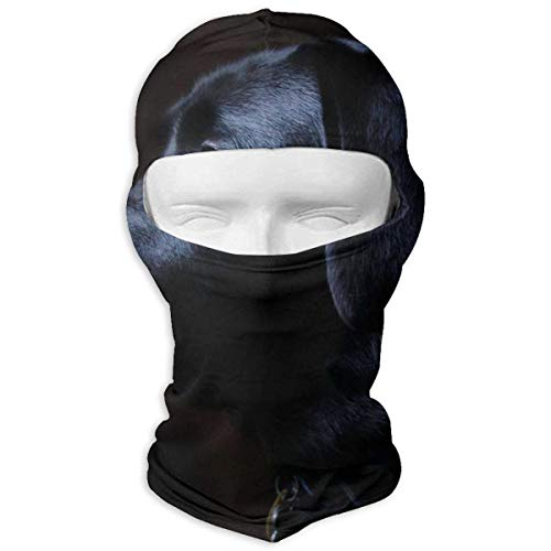 Vidmkeo Black Labrador Dog Winter Ski Full Face Mask Windproof Balaclava Hood for Men and Women Design14 Performance Womens Hut