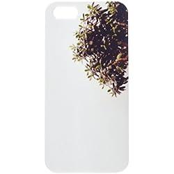 Dickblatt Pflanze auf weiß Kommode in Minimalismus Innen Handy Schutzhülle iPhone5
