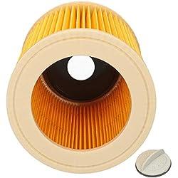Wessper Cartouche filtrante pour aspirateur Karcher A2254 M(1.723-300.0) (Pour usage sec)