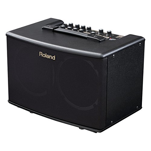 Roland 17.5W + 17.5W ACOUSTIC AMP WITH