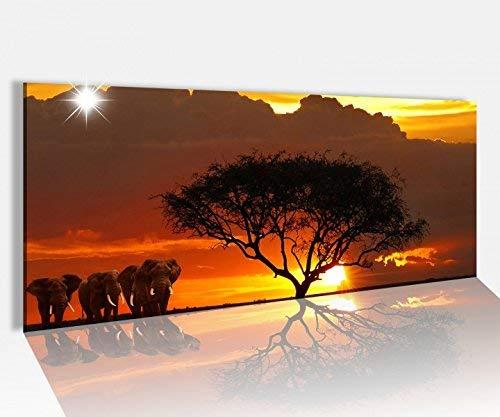 Foto Acrílica 100x40cm África Sabana Elefantes Safari Cuadro Acrílico Imagen Vidrio Acrílico...