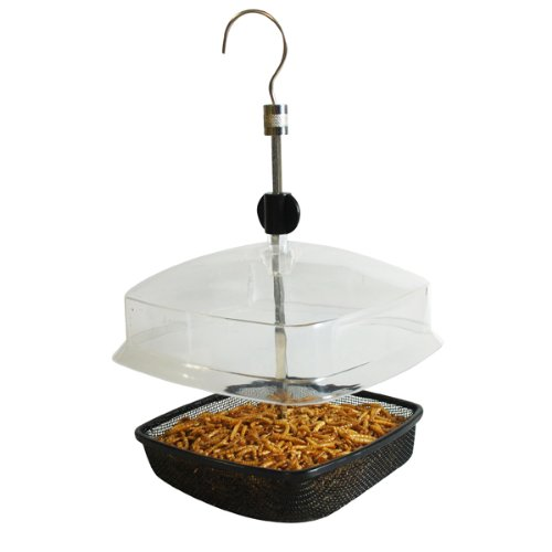 kingfisher-bird-care-ajustable-hanging-bird-feeder-mealworm