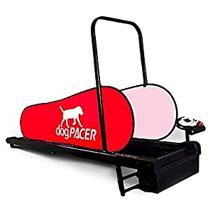 DogPacer Dog Treadmill by dogPACER 6
