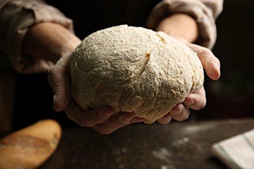 Bio Sauerteig (Roggensauer) | aus 100% Demeter Roggenmehl | frischer Natursauerteig – perfekt für Brote oder als Anstellgut – Inhalt: 300g Roggensauerteig - 4
